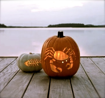 decorated-pumpkins-